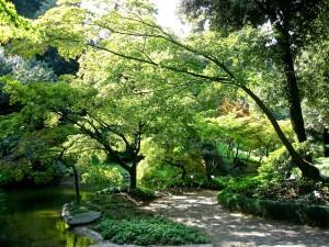 LakeComo-Botanical-Garden