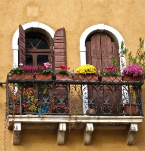 Venice Window Box Flowers