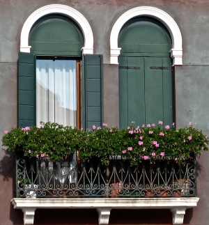 Venice WInodow Box Flowers