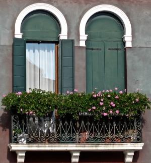 Venice WInodow Box Flowers