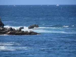Monterrey Bay, Monterey, California